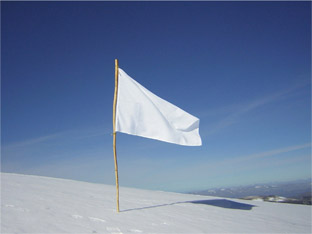 White-Flag-Small